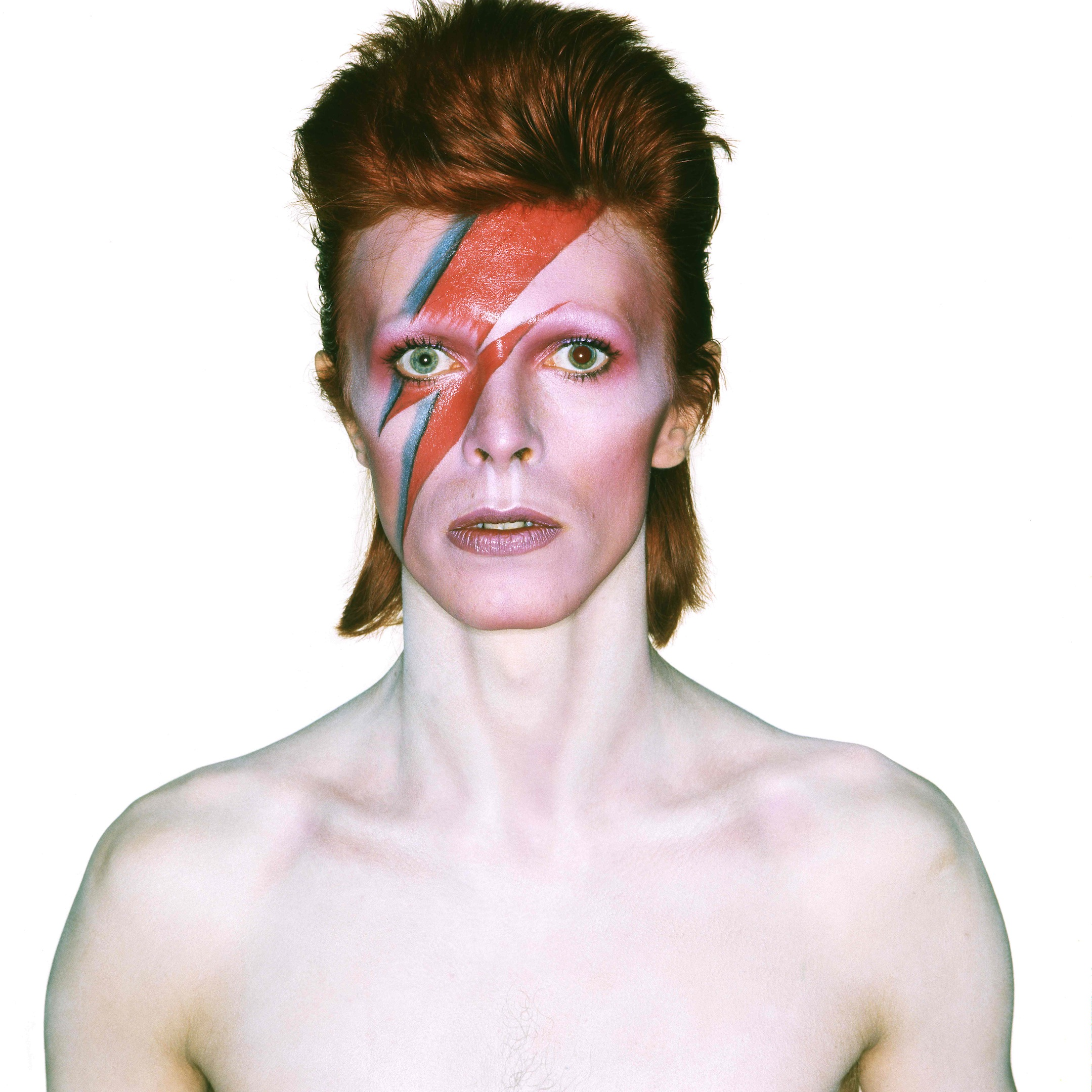 David bowie archive at v a the collector tribune the collector tribune - Aladdin singe ...
